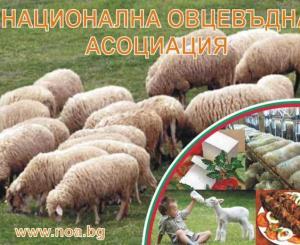 Национална Овцевъдна Асоциация