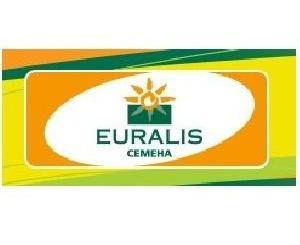 Еуралис Семена