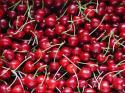 Непрекъснатите дъждове повреждат черешовата реколта в Кюстендил и региона
