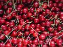 Европейската комисия (ЕК) разпредели националните пакети по схемата за предоставяне на пресни плодове и зеленчуци за децата и учениците в държавите от Общността през стопанската 2014 – 2015 г., съобщиха от пресцентъра на ЕК
