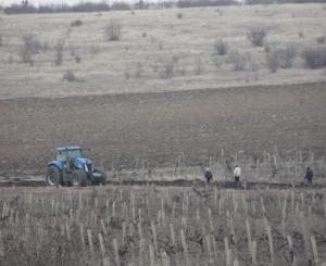 Трактор на полето
