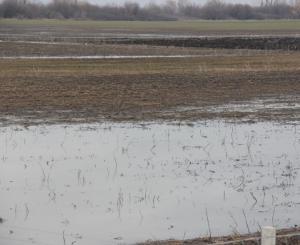 Наводнени полета в област Сливен