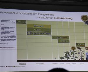 Технология за растителна защита при слънчоглед от Синджента