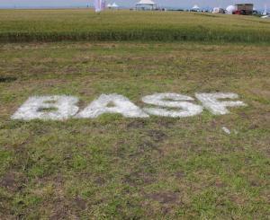 BASF Добив плюс експо 2015 с. Тихомирово