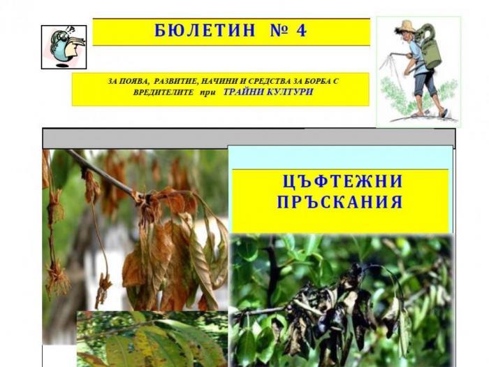 Цъфтежни пръскания при овошки и лозя - Бюлетин растителна защита 4 2017