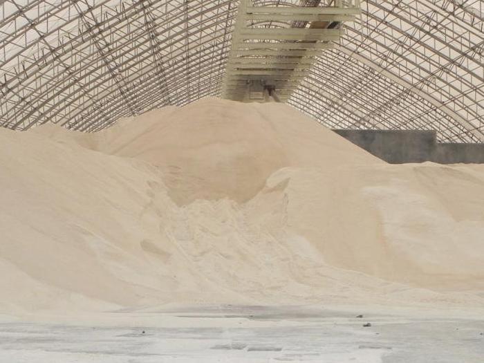 Зърното  стартира на зелено търговията през новата година