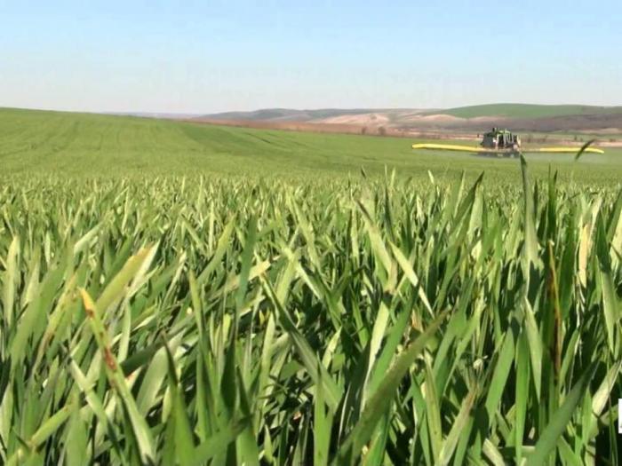 USDA повиши световните добиви от зърно за 2015/16 г. с нови 4 млн. т