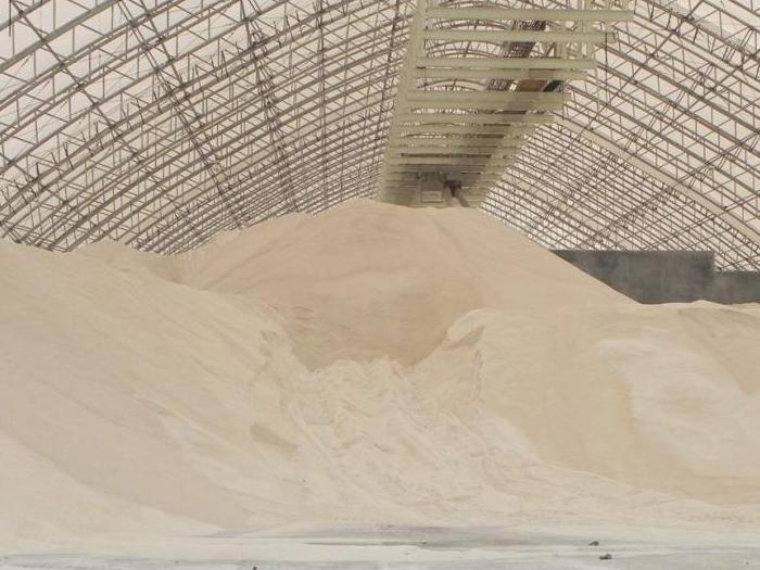 Стабилен пазар на зърно  у нас и по света отчетоха от софийска стокова борса