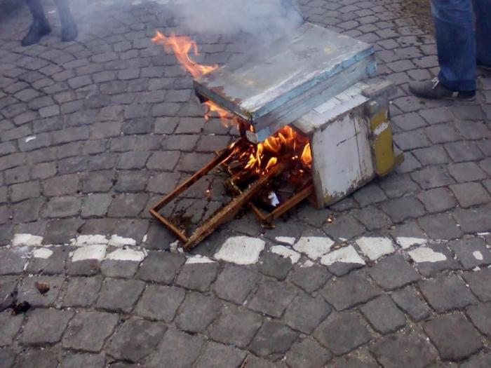 Преработватели: Евтин украински мед убива българското производство