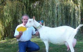 7 май в 11 часа в зала 2 на Института по високпланинско земеделие и животновъдство