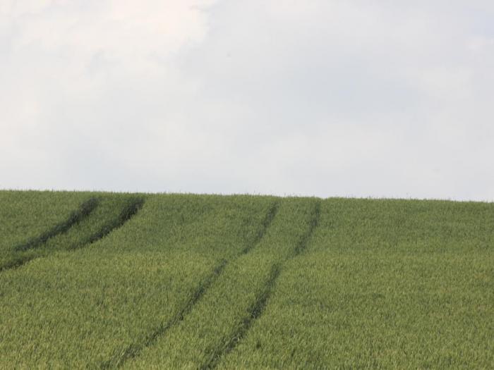 Екипът на БАСФ ще представи продуктите си за растителна защита на открити дни в цялата страна