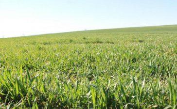 На 10 май 2014 г. зам.-министърът на земеделието и храните Явор Гечев ще проведе среща със земеделски стопани от област Ловеч