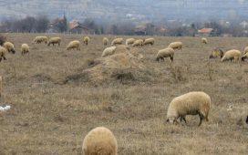 """Срещата е насрочена за 9 октомври от 10.00 часа в сградата на Областна дирекция """"Земеделие"""" във Враца."""