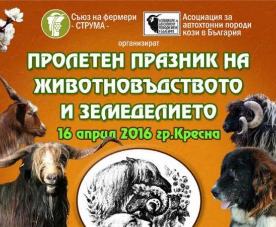 Празникът на животновъдството започва на 16 април 2016г. в гр.Кресна