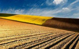 Право на подпомагане по схемата за преразпределително плащане имат земеделски стопани