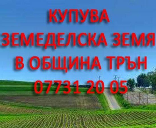 Купува земеделска земя в община Трън