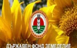 Държавен фонд Земеделие е изплатил субсидиите на тютюнопроизводителите