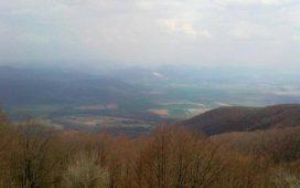 Около 150 000 куб.м лежаща маса е прогнозното количество пострадала дървесина след обилните снеговалежи през март в област Кърджали