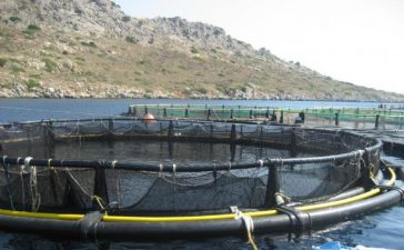 """Субсидиите са по мярка 4.1 """"Развитие на рибарските области"""" от Оперативна програма за развитие на сектор """"Рибарство"""" 2007-2013 г"""