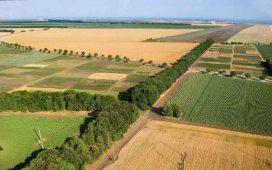 820   са биологичните производители на земеделска продукция в България