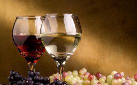 Международната изложба за лозарство и винарство ще се проведе от 4  до 8 март в Международен панаир Пловдив