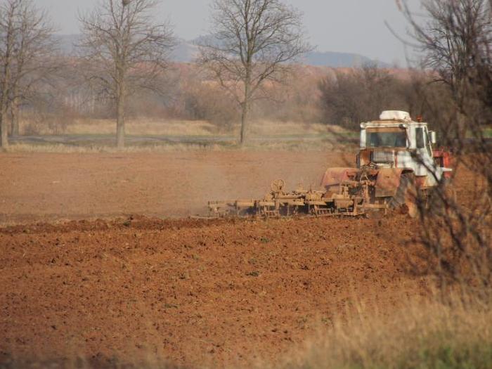Министърът на земеделието ще може да се разпорежда  чрез търг с имоти в бившите стопански дворове