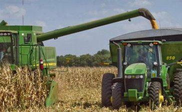 Фермерите в региона са прибрали около 33 процента или 35 720 дка от площите с царевица