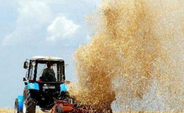 Интервенционното изкупуване на обикновена пшеница се осъществява във връзка с общата организация на пазара на зърнени култури в ЕС и ще продължи до 31 май 2012 г.