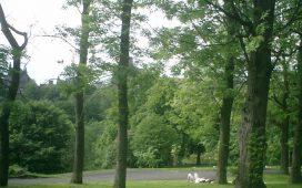 Министрите на околната среда и водите Нона Караджова и на земеделието и храните д-р Мирослав Найденов откриха обновен горски дом в парка Врачански Балкан.