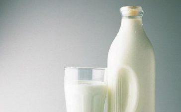 От 1 до 30 септември в областните дирекции на фонд Земеделие се подават документи по европейската схема Училищно мляко