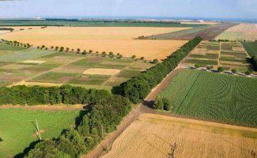 Министърът на земеделието и храните д-р Мирослав Найденов съобщи