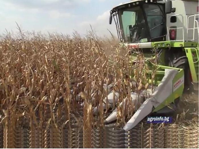 Рекордни добиви от царевица с Дюпон Пионер