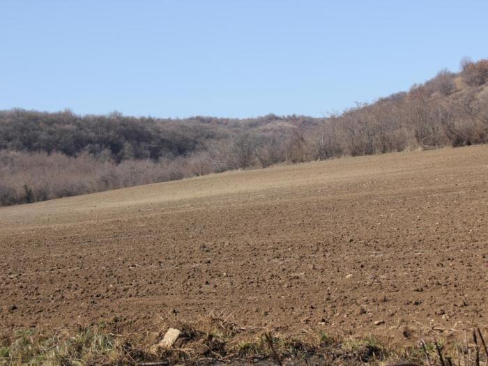Каква и за кои от фермерите ще е ползата от преразпределителните плащания от директните плащания за 2014 година