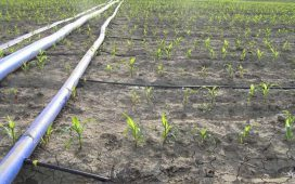 Цените за доставка на вода за напояване са диференцирани по региони и начин на доставка