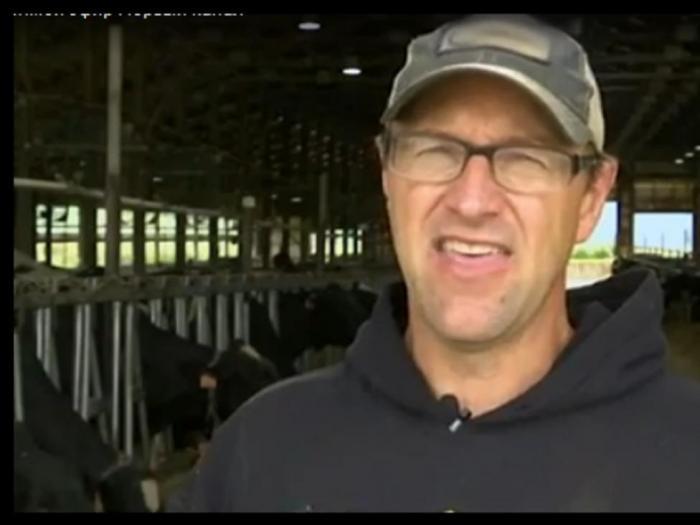 Щастливите крави дават средно по 59 литра мляко на ден