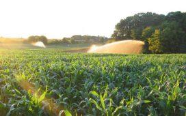 Министърът на земеделието Димитър Греков посочи