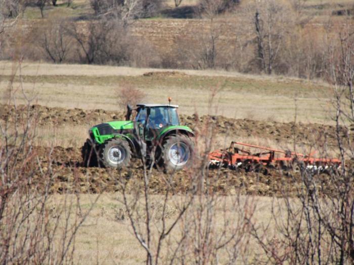 Средният добив от царевица в ЕС отбелязват ръст от 9