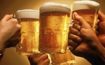 Защо е бирата е полезна