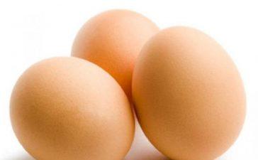 51 млн. кокошки ще снасят нелегално яйца в ЕС