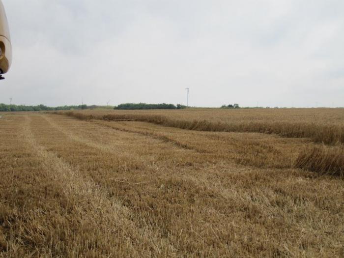 Бранша иска корекции в дефиницията за Активен фермер