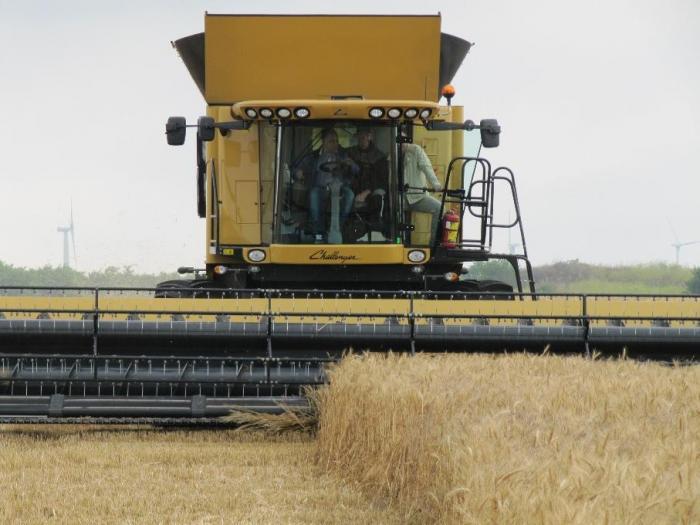 След приключване на жътвата е задължително да се извършат маршрутни обследвания за определяне плътността от полевката