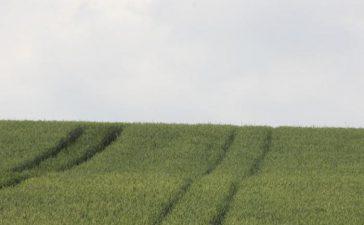 Зам.-министърът на земеделието и храните Явор Гечев: Готови сме с проекта на Наредба 9 за мярка 112 Млад фермер