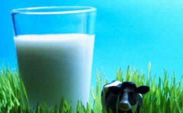 Първите два проекта са за прилагащи регламенти за частно складиране за масло и за частно складиране за обезмаслено мляко на прах
