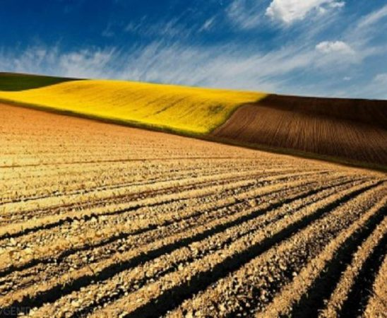 Анализи и перспективи за пазара на земеделска земя 2012 г. е годината с най-голям брой сделки (129 000 броя) и най-много продадена земеделска земя в декари (1.46 млн. дка)