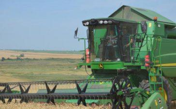 Стартира жътвата на ечемик. МЗХ очаква реколтата от пшеница да е около 4