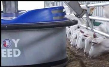 Може да замести фермера при хранене на животните в стопанства с до 800 кози