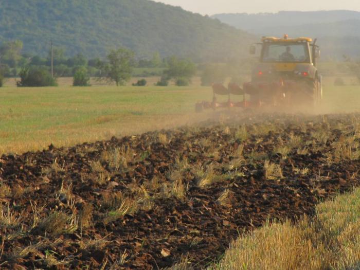 """С наредбата се уреждат условията и редът за прилагане на  подмярка """"Инвестиции в земеделски стопанства"""" от Програмата за развитие на селс"""