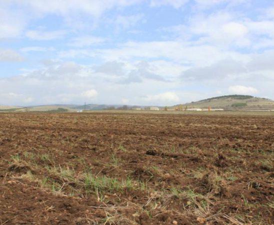 Спазването на общите принципи за интегрирано управление на вредителите става задължително за земеделските стопани