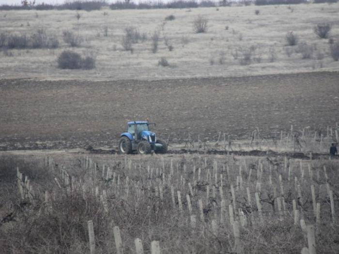 Целта на мярка 6.1 МЛАД ФЕРМЕР предоставяне на специално годишно плащане за млади фермери