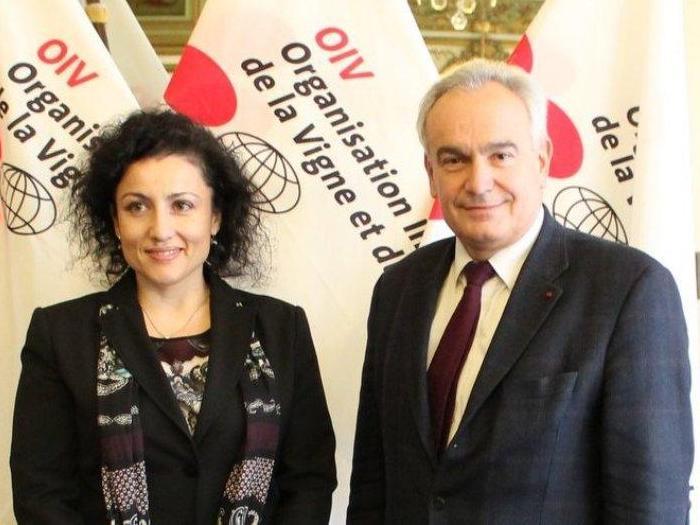 България засилва сътрудничеството си с Международната организация по лозарство